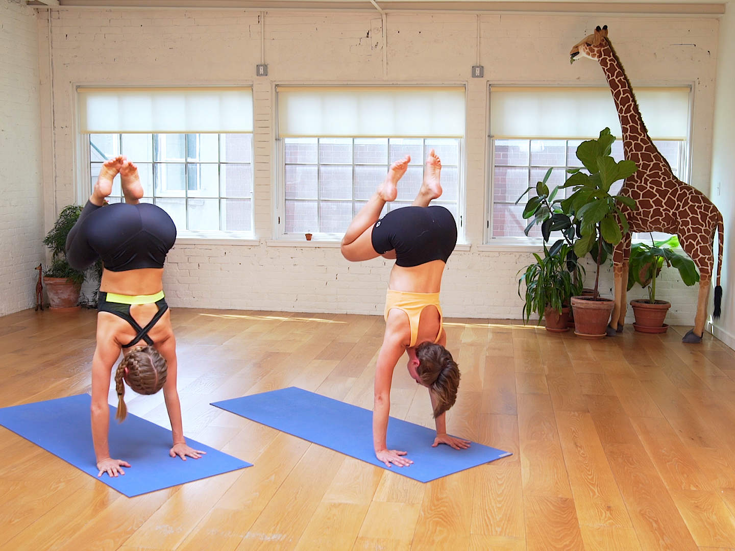 A Guide To Learn Therapeutic Yoga