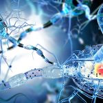Stem Cell Therapy: A Promising Option for Multiple Sclerosis